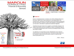 Maroun Consulting